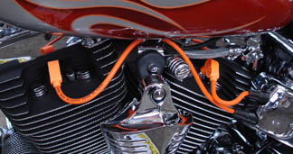 The Truth about Spark Plug Wires and new Harleys.... : V-Twin ...