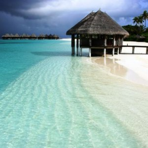 maldives s